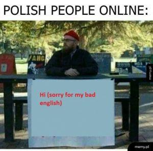 Polacy w sieci