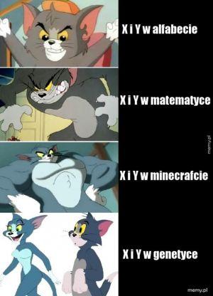 Memy z Tomem najlepsze