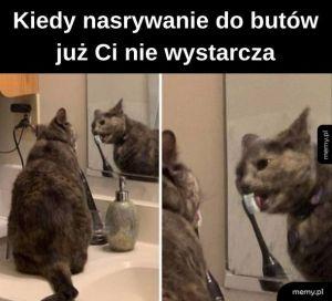 Lizu lizu