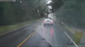 Niespodziewana sytuacja na drodze