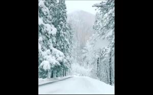 Zima  w Yosemite