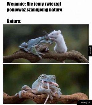 Natura taka jest
