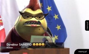 Dyrektor Sanepid
