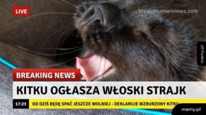 Strajk Kitku