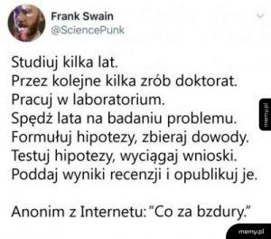 Ludzie w internetach