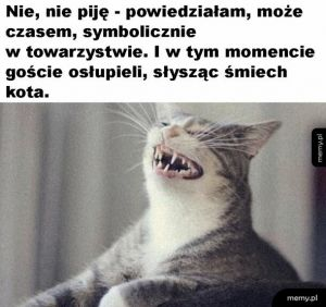 Śmiech kota