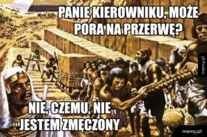Tymczasem w Januszowie