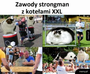 Zawody strongman z kotełami XXL
