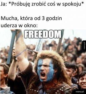 Ku wolności!
