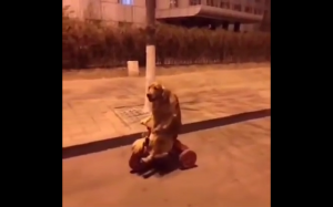 Pieseł jedzie na rowerze