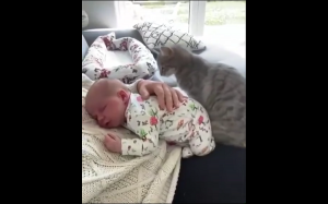 Każdy potrzebuje się przytulić