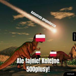 500 plusy
