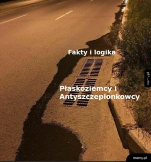 Fakty i logika