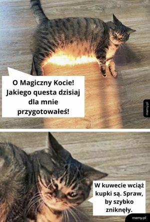 Magiczny Kot