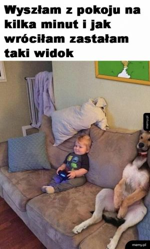 Człowieko-pies