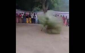 Gambijski taniec