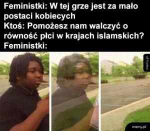 Feministki