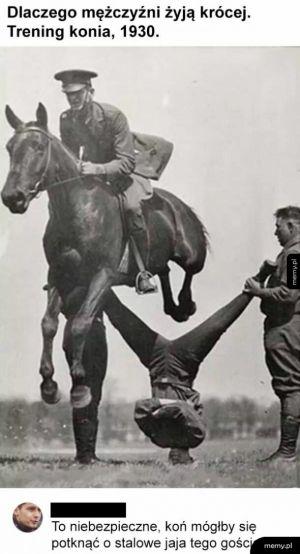 Trening konia