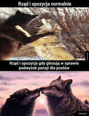 Polscy politycy