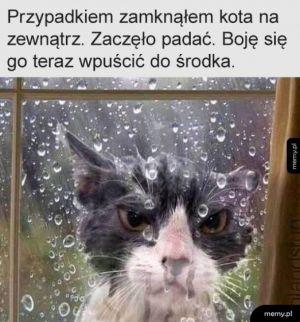 Wpuść mnie