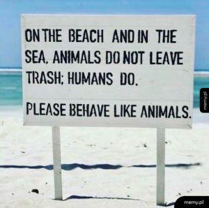 Behave like animals