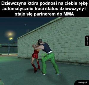 Partner MMA
