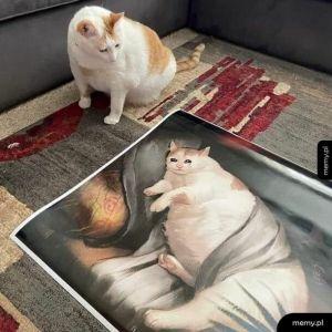 Bohater memów znaleziony