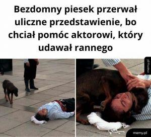 Tylko nie płacz; tylko nie płacz; tylko nie płacz...