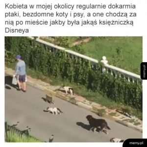 Dokarmianie zwierząt