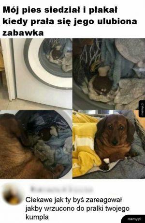 Przyjaciel w pralce