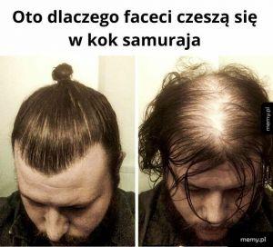 Kok samuraja