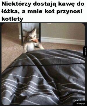 Kochany kotek