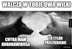 Walka dwóch wilków