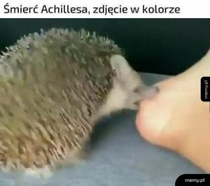 Śmierć Achillesa
