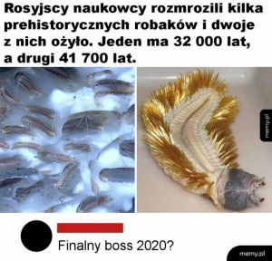 Finalny boss