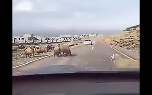 I jak tu przejechać?