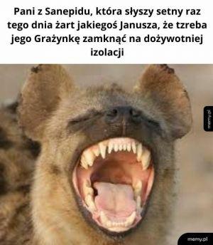 Żart Janusza