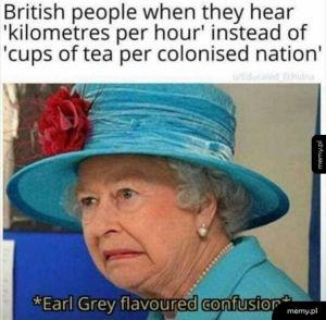 Brytolczyki