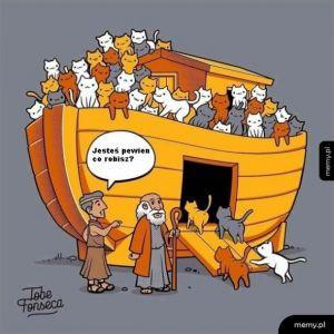 Gdybym był Noem