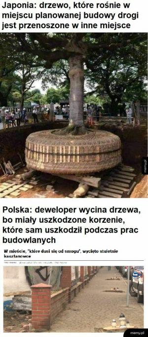 U nas w Polszy