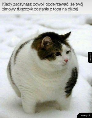 Zimowy tłuszczyk