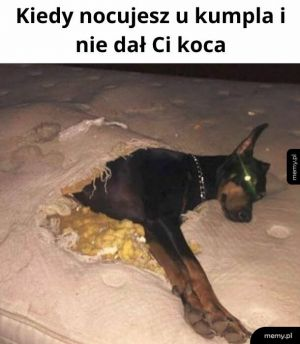Kocyk