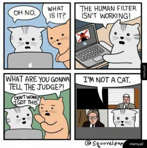 Powiedz, że nie jesteś kotem- może uwierzą :D