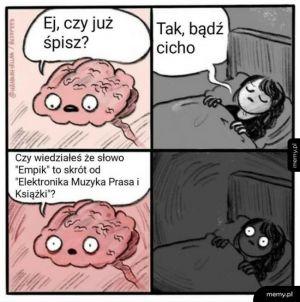 Mózg w nocy