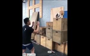 Idealny skok