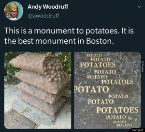 Rzeźba z ziemniaków