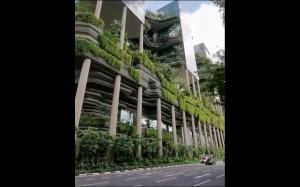 Miejska dżungla, Singapur