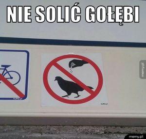 Nie solić gołębi.