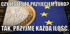 Czy jesteś za przyjęciem euro?