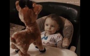 Co ten Rudolf